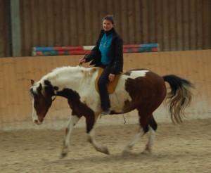 Cavallobild