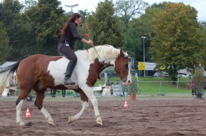 nice round canter